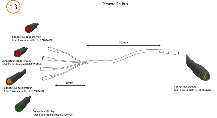 Schéma pieuvre Eb-bus avec l'ensemble des raccordements et connecteurs nécessaires pour câblage contrôleur 15V